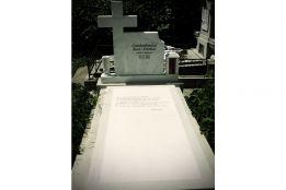 Monument din MARMURA 12